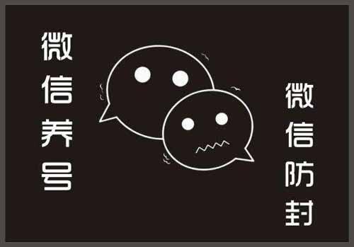 2019最新微信养号攻略 互联网 自媒体 微信 好文分享 第1张