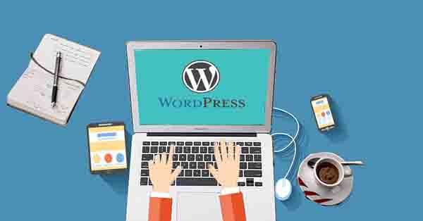 一些真诚的建议,写给想玩博客的新手朋友 独立博客 网站运营 博客运营 第2张